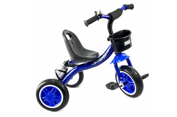 Велосипед Favorit Trike Kids FTK-108DB (синий, 2019)